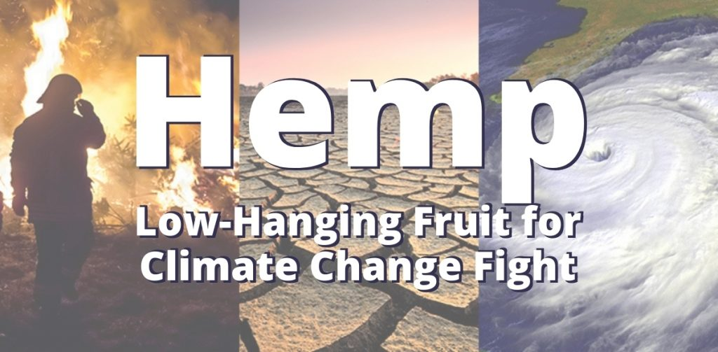Hemp: Literally the Low-Hanging Fruit in Climate Change Fight